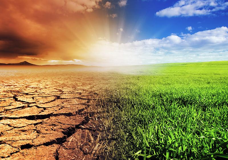 Países celebran acuerdo contra el cambio climático
