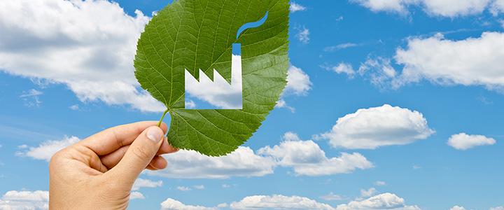 Nuevo programa de Consumo y Producción Sustentable