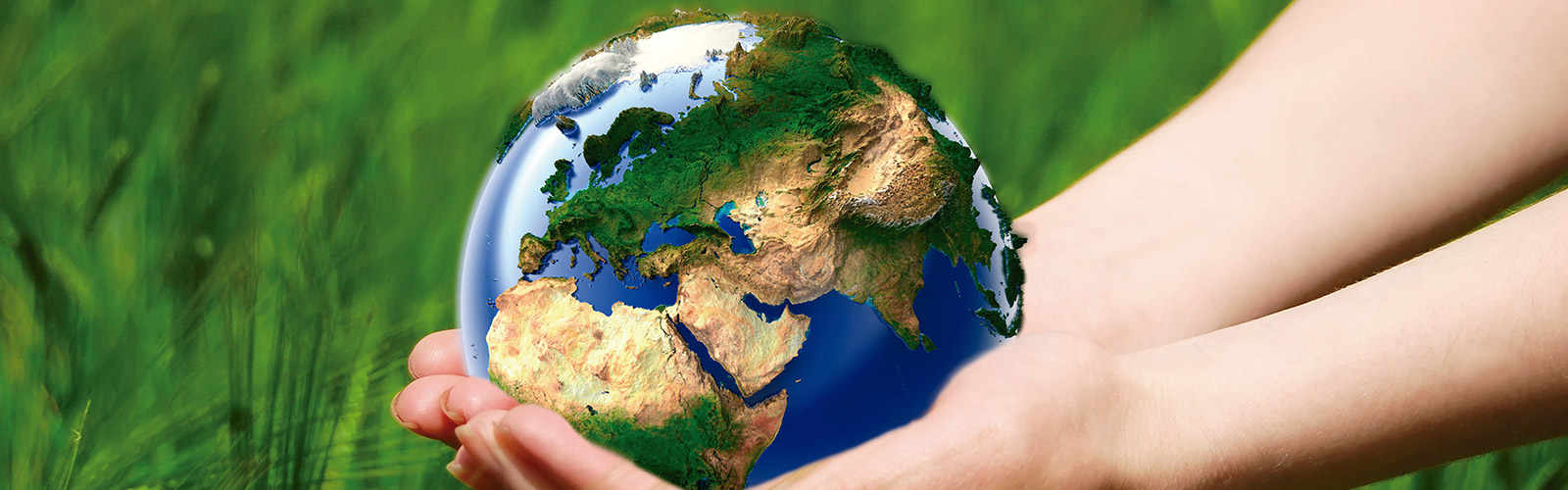 ¿Conoces los instrumentos de gestión ambiental y cuáles se manejan en Chile?