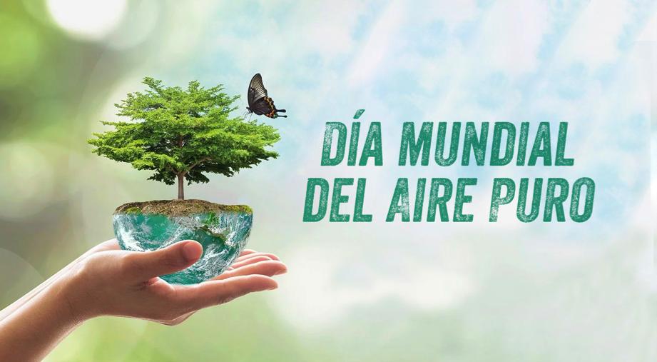¿Sabías qué este 15 de noviembre se celebra el Día Mundial del Aire Puro?