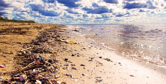 Crean modelo vía satélite para detectar desechos en playas chilenas