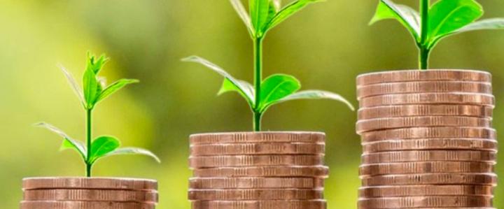 El Impuesto Verde, cómo se aplica en las industrias?