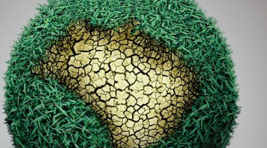 Biocarbón Magnético: el nuevo método para descontaminar suelos