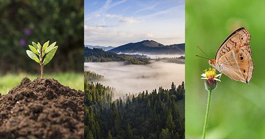¡Hidronor te invita a sumar tu aporte para conmemorar el Día Mundial del Medio Ambiente!