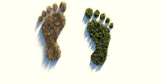 Hidronor promueve reducir el sobregiro ecológico y mejorar nuestro ecosistema