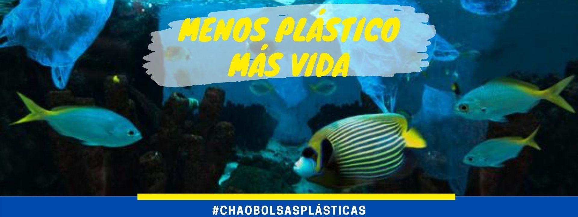 Chile se convierte en el primer país de Latinoamérica en prohibir el uso de bolsas plásticas comerciales